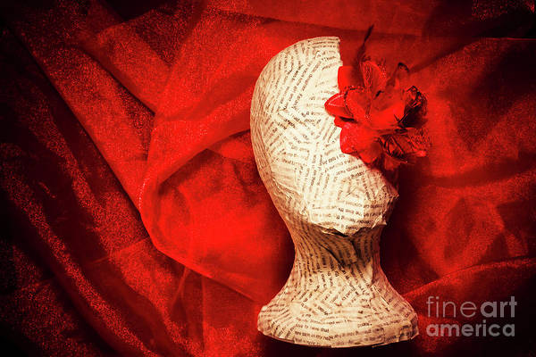 Flower Head Photograph - Afterlife Chronicles by Jorgo Photography - Wall Art Gallery
