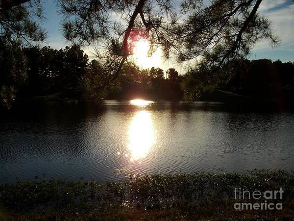 Photograph - Afternoon At The Lake 2 by Tammie J Jordan