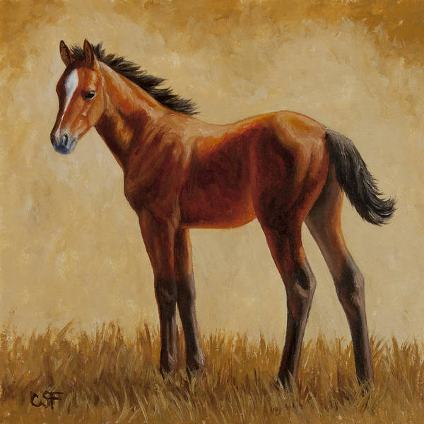 Quarter Horse Painting - Afternoon Glow by Crista Forest