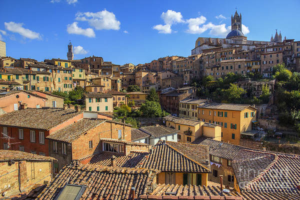 Photograph - Afternoon In Siena by Spencer Baugh