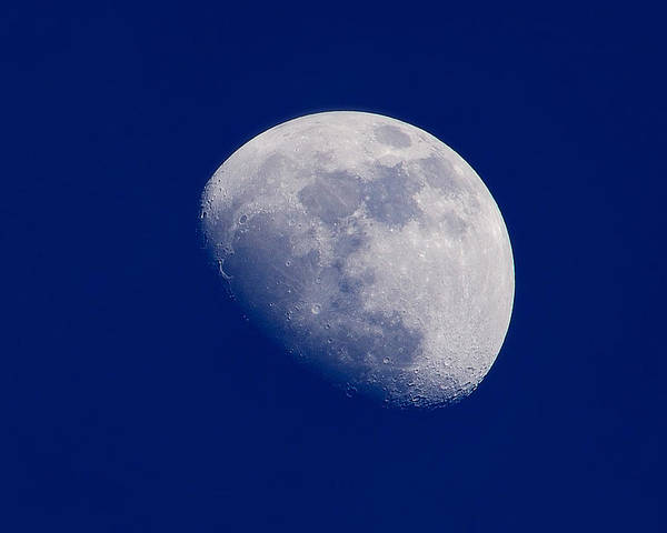 Photograph - Afternoon Moon by Greg Norrell