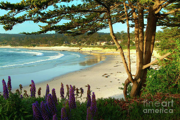 Photograph - Afternoon On Carmel Beach by Charlene Mitchell