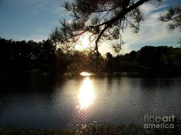 Photograph - Afternoon On The Lake by Tammie J Jordan