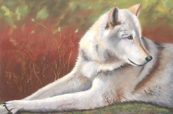 Painting - Afternoon Repose by Janet Biondi