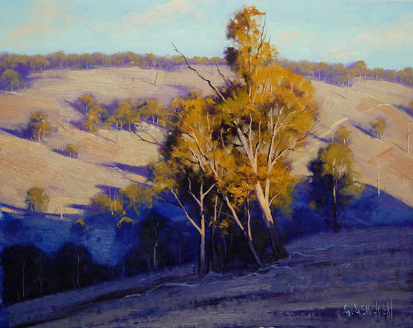 Investment Wall Art - Painting - Afternoon Shadows Turon Hills  Nsw Australia by Graham Gercken
