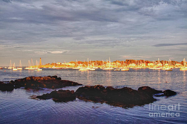 Photograph - Afternoon Sun On Marblehead Neck by Jeff Folger