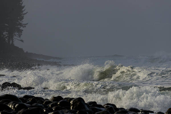 Photograph - Afternoon Surf by Robert Potts