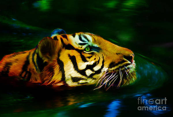 Digital Art - Afternoon Swim - Tiger by Tracey Everington