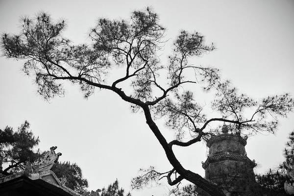 Photograph - Afternoon Thien Mu Pagoda by Tran Minh Quan