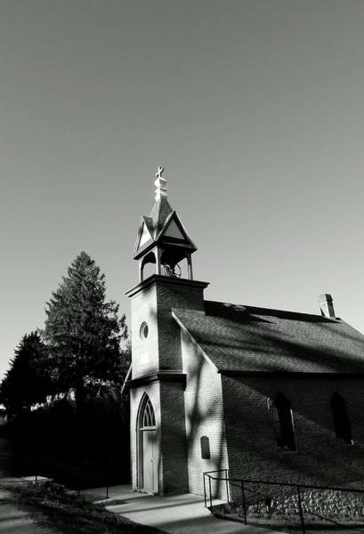 Photograph - Afternoon Worship by Wild Thing