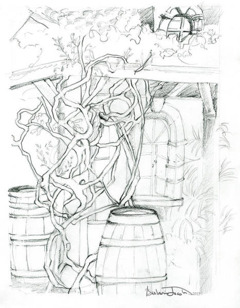 Drawing - Afternoons On The Patio by Barbara Jacobs