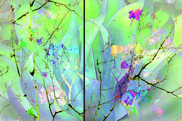 Complimentary Colors Mixed Media - Agave Illusion by Patricia Stanton