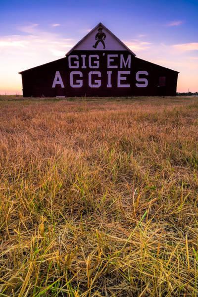 Aggie Land Art Print
