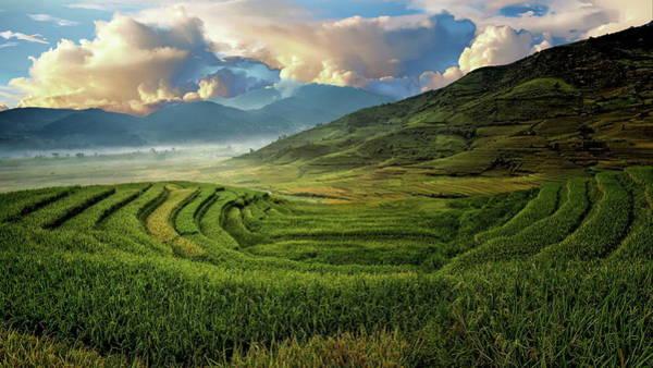 Photograph - Agricultural Landscape by Anthony Dezenzio