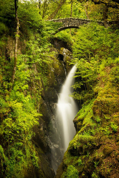 Aira Force Wall Art - Photograph - Aira Force by Dave Valler