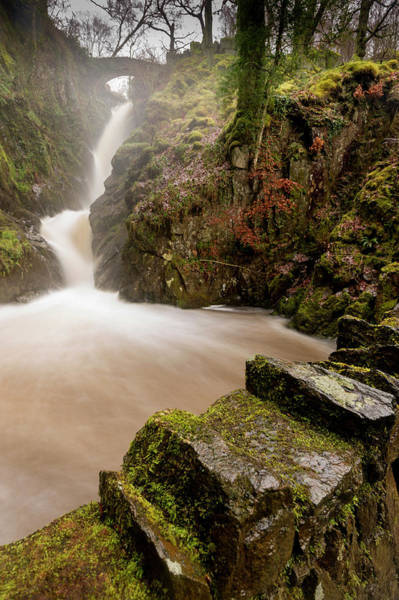 Aira Force Wall Art - Photograph - Aira Force High Water Level by Stephen Dewhurst