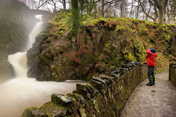 Aira Force Wall Art - Photograph - Aira Force Lower Stone Bridge by Stephen Dewhurst