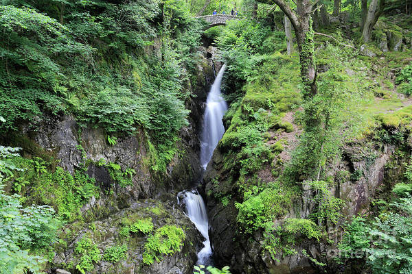 Aira Force Wall Art - Photograph - Aira Force Waterfall, Aira Beck, Ullswater, Lake District by Dave Porter