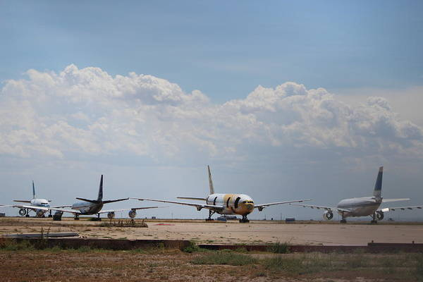 Photograph - Airplane Graveyard by Colleen Cornelius