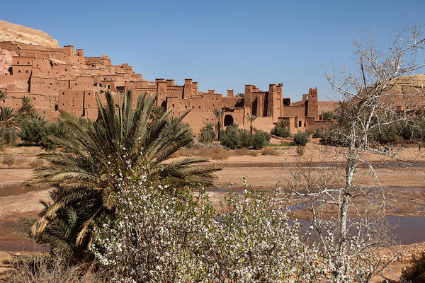 Ait Benhaddou Photograph - Ait Benhaddou And With Trees by Aivar Mikko