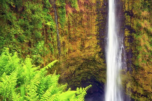 Photograph - Akaka Falls by Christopher Johnson