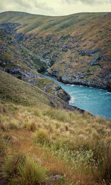 Wall Art - Photograph - Akaroa Head Scenic Reserve New Zealand by Joan Carroll