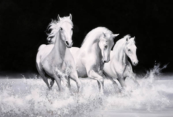 White Horse Painting - Al Galoppo  Nella Notte by Guido Borelli