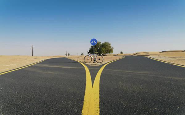Photograph - Al Qudra Cycling Track Near Dubai In The United Arab Emirates by Alexandre Rotenberg