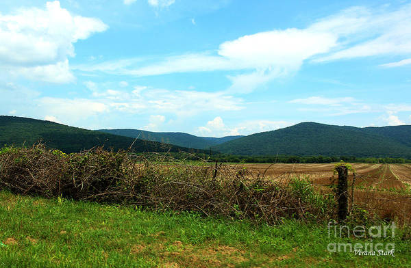 Wall Art - Photograph - Alabama On The Road by Verana Stark