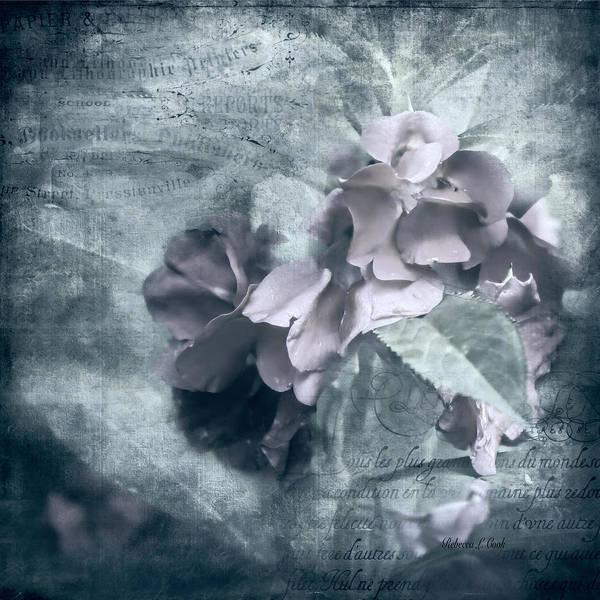 Photograph - Alabaster Petals by Bellesouth Studio