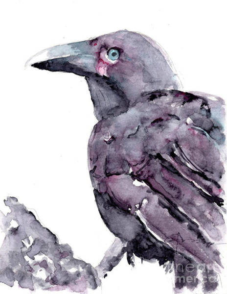 Painting - Alala - Hawaiian Crow by Claudia Hafner