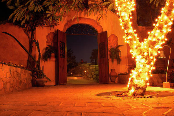 Photograph - Alamos Mexico by Thomas R Fletcher