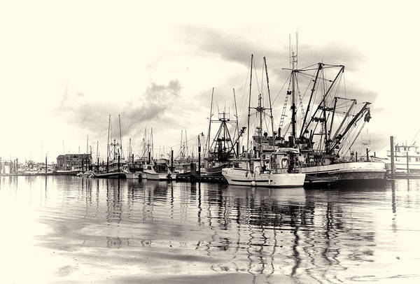 Photograph - Ketchikan Harbor 2 by Marilyn Wilson