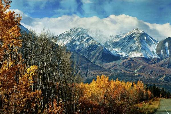 Photograph - Alaskan Fall 1 by Marty Koch