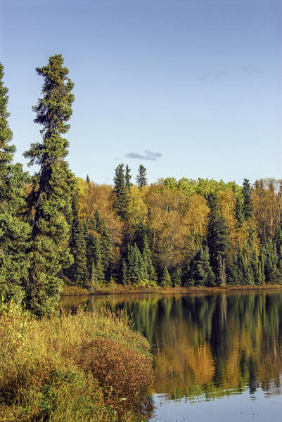 Photograph - Alaskan Lake In Autumn by Patrick Wolf