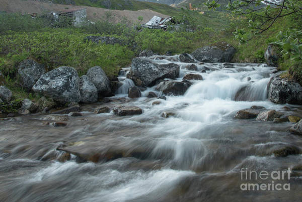 Gold Rush Wall Art - Photograph - Alaskan Stream by Paul Quinn