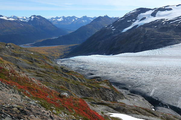 Photograph - Alaska's Exit Glacier by Steve Wolfe