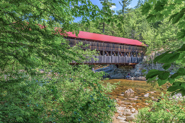 Photograph - Albany Covered Bridge Through The Trees by Brian MacLean