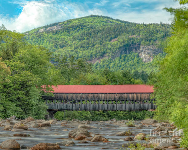 Photograph - Albany Road Covered Bridge by Rod Best