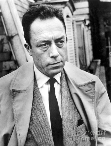 Trench Wall Art - Photograph - Albert Camus (1913-1960) by Granger