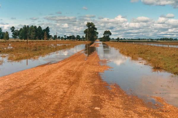 Photograph - Albert Floods 1988 by Vicki Ferrari
