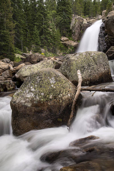 Photograph - Alberta Falls Rmnp by Lee Kirchhevel