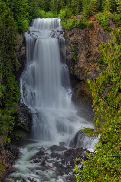 Photograph - Alexander Falls by Jacqui Boonstra