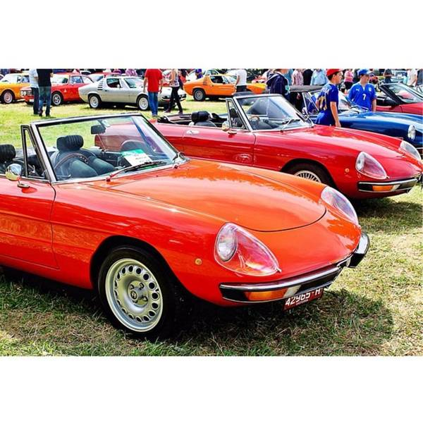 Alfa Romeo Photograph - Alfas Everywhere. 1750 Spiders Up Front by Anthony Croke