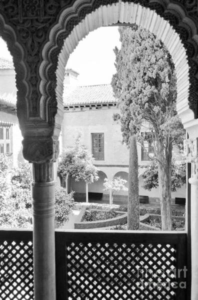 Photograph - Alhambra Gardens / Granada by Karina Plachetka