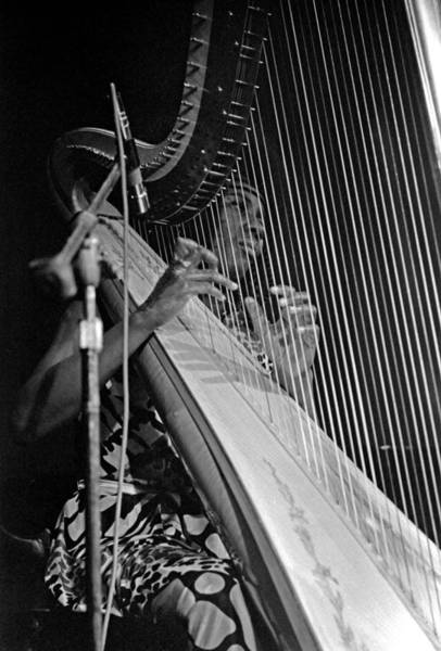 Photograph - Alice Coltrane On Harp by Lee Santa