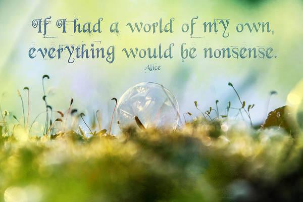 Photograph - Alice's Nonsense World  by Christina VanGinkel