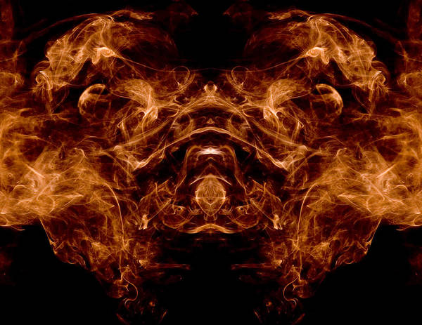 Photograph - Alien Dog by Val Black Russian Tourchin