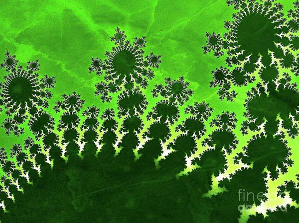 Fibonacci Spiral Digital Art - Alien Eggs by Raphael Terra