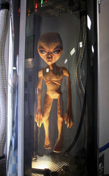 Floating Museum Photograph - Alien In Stasis, Ufo Museum, Roswell, New Mexico, Usa by Derrick Neill